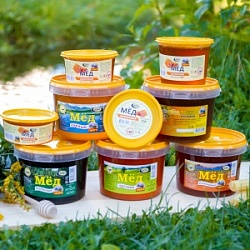 "Collection of natural honey ""Honey Voyal"""