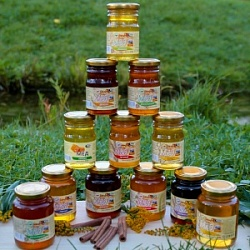 "Collection of natural honey ""The village of  Apiary"""